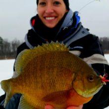 Choosing the Best Ice-Fishing Line for Panfish | Jenn